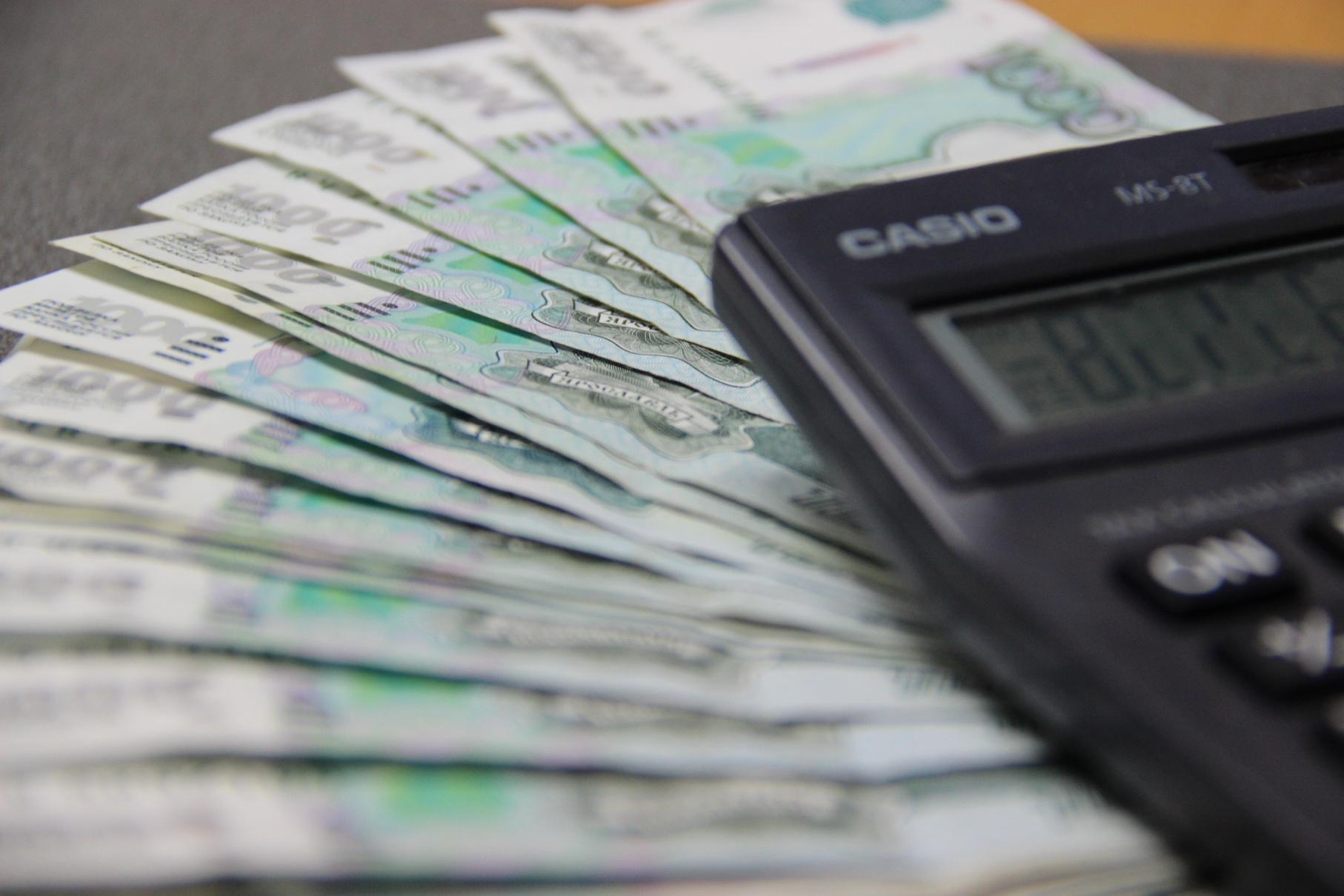 займ государственных денег