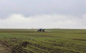 До 2025 года в Оренбуржье введут в оборот 273 тысячи гектаров неиспользуемой пашни