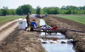 Оренбургские фермеры внедряют капельную систему орошения