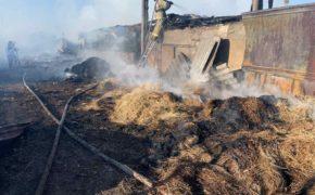 Под Оренбургом пожарные смогли отстоять от огня жилые постройки